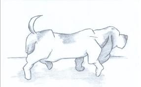 BH Figure Drawing 1