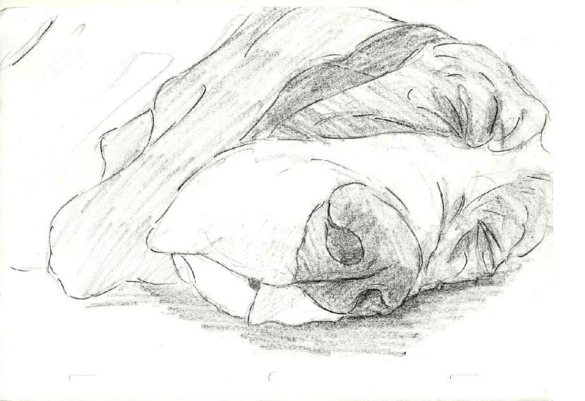 BH Sleeping
