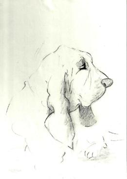 BH Still Drawing 10