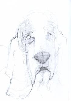 BH Still Drawing 11