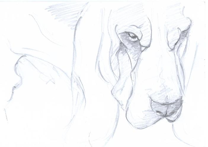 BH Still Drawing 3