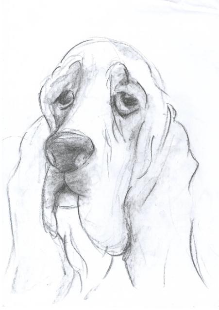 BH Still Drawing 6
