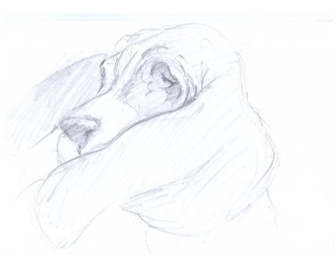 BH Still Drawing 7