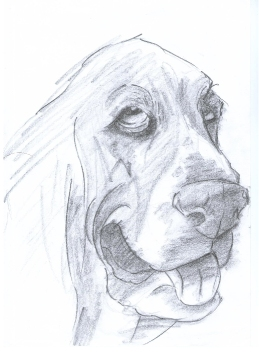BH Still Drawing 8